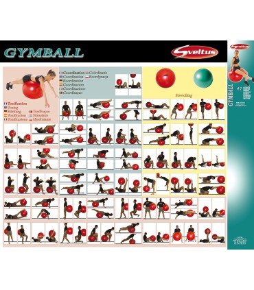 Gymball exercises poster