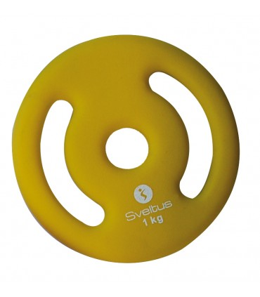 Plate with handles 1 kg x1
