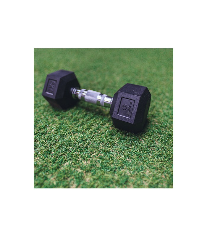 Hexagonal dumbbell 47.5 kg x1