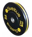 Disque olympique training 15 kg x1